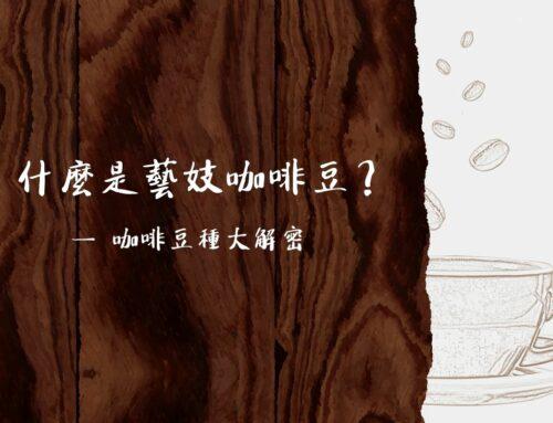 什麼是藝妓咖啡豆?咖啡豆種大解密